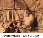 close up texture of drying... | Shutterstock . vector #1235113225