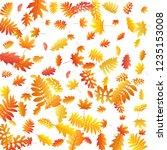 oak  maple  wild ash rowan... | Shutterstock .eps vector #1235153008