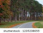path in phoenix park dublin ... | Shutterstock . vector #1235238055