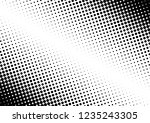 dots background. monochrome... | Shutterstock .eps vector #1235243305