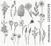 collection of hand drawn floral ...   Shutterstock .eps vector #1235293198