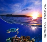 Sea turtle swimming over beautiful coral reef under sunset sky splitted by waterline - stock photo