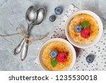 creme brulee  cream brulee ... | Shutterstock . vector #1235530018