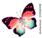 Stock photo colorful butterfly isolated on white background 123560338