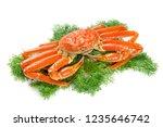 red snow crab | Shutterstock . vector #1235646742