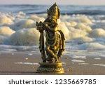 sea view murti krishan bhagwan... | Shutterstock . vector #1235669785
