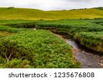 water stream in the middle of... | Shutterstock . vector #1235676808