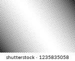 dots background. grunge... | Shutterstock .eps vector #1235835058