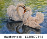 A Couple Of Swans Swimming In...