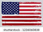 vector grunge dirty american... | Shutterstock .eps vector #1236060838