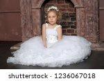 little girl in wedding dress | Shutterstock . vector #1236067018