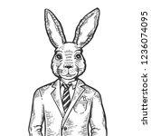 rabbit hare businessman... | Shutterstock . vector #1236074095
