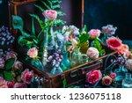 flower collection in vintage... | Shutterstock . vector #1236075118