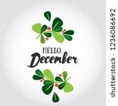 hello  december  vector...   Shutterstock .eps vector #1236086692