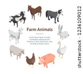 farm animals 3d banner card... | Shutterstock .eps vector #1236109012