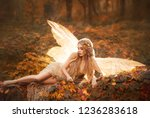 slim girl became a fairy  a... | Shutterstock . vector #1236283618