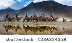 reflection of the camel riders | Shutterstock . vector #1236324358