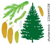 spruce and pine. vector... | Shutterstock .eps vector #1236449158
