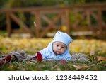 newborn baby boy  curiously... | Shutterstock . vector #1236449452
