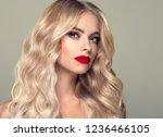 beautiful hair blonde woman... | Shutterstock . vector #1236466105