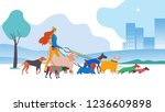 Stock vector vector illustration set icons of dogs and dog walker in the city different breeds basset hound 1236609898