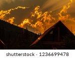nature scenes in the beautiful... | Shutterstock . vector #1236699478