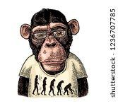 monkeys dressed in a t shirt... | Shutterstock .eps vector #1236707785