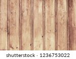 old light brown wooden door... | Shutterstock . vector #1236753022
