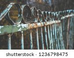 background of old rustic iron... | Shutterstock . vector #1236798475