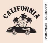california. vector hand drawn...   Shutterstock .eps vector #1236802045