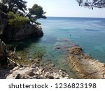 Rocky Beach Surrounded By Pine...