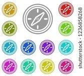 compass icon in multi color....