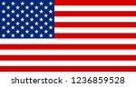 usa national flag. united... | Shutterstock .eps vector #1236859528