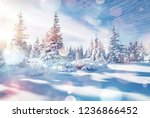 charming winter landscape in... | Shutterstock . vector #1236866452