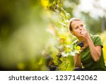 woman picking grape during wine ... | Shutterstock . vector #1237142062