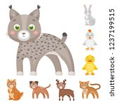 toy animals cartoon icons in...   Shutterstock . vector #1237199515