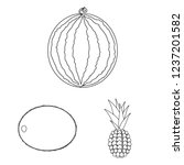 different fruits outline icons... | Shutterstock . vector #1237201582
