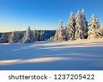 winter landscape in the warm...   Shutterstock . vector #1237205422