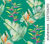 succulents and tropical leaves... | Shutterstock . vector #1237326292