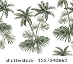 beautiful tropical vintage... | Shutterstock .eps vector #1237340662