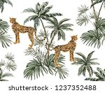 beautiful tropical vintage... | Shutterstock .eps vector #1237352488