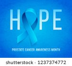 banner for prostate cancer... | Shutterstock . vector #1237374772