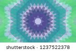 geometric design  mosaic of a...   Shutterstock .eps vector #1237522378