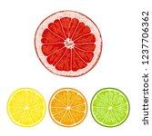citrus oranges  lemons ...   Shutterstock .eps vector #1237706362