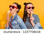 close up face portrait of two... | Shutterstock . vector #1237708618