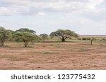 View On Savanna Plain With...