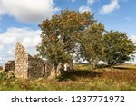 ruins of croft at moss of... | Shutterstock . vector #1237771972