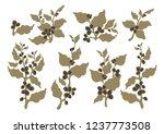 vector set coffee tree  branch  ...   Shutterstock .eps vector #1237773508
