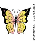 the insect a beautiful... | Shutterstock .eps vector #1237852015