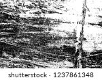 abstract background. monochrome ... | Shutterstock . vector #1237861348